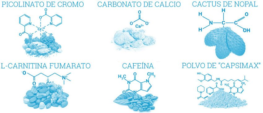 Ingredientes naturales de alta calidad que componen phenq