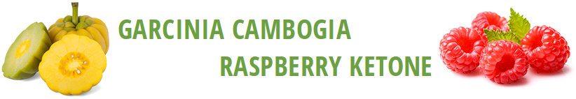 ingredientes clínicamente probados clinicamente probados para hacer garcinia cambogia extra