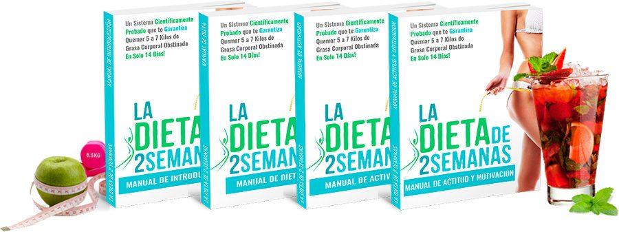 La dieta de 2 semanas consiste en 4 manuales escritos por Brian Flatt para aprender cómo preparar esta dieta