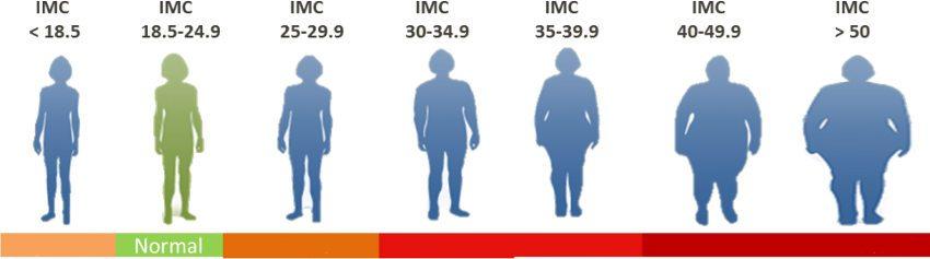 Estudie su IMC (índice de masa corporal) para averiguar si tiene sobrepeso