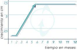 Curva y resultados científicos del estudio en España de los efectos de Xtrasize en los usuarios